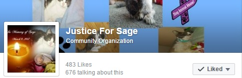 JUSTICE FOR SAGE